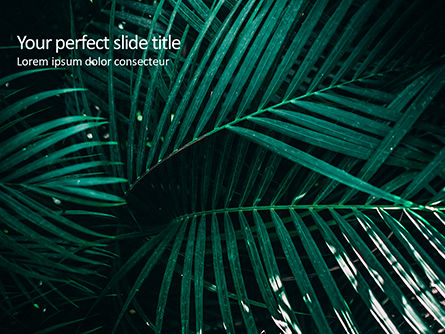 Nature & Environment: Palm Leaves PowerPoint Template #15667