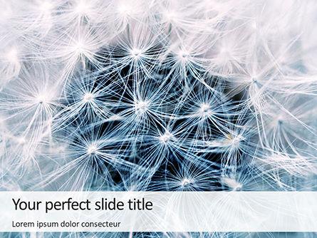 Templat Powerpoint Foto Closeup Bunga Dandelion Putih Gambar