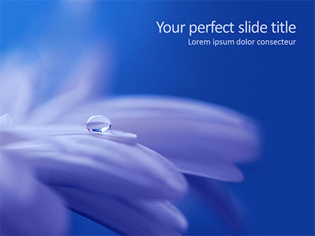 Nature & Environment: Macro Photo of Water Drop on Flower Petal PowerPoint Template #15691
