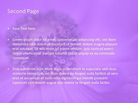 Purple Anemone PowerPoint Templates, Slide 2, 15700, Nature & Environment — PoweredTemplate.com