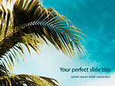 Nature & Environment: Palm Leaves Against the Turquoise Sky Presentation #15769