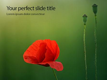 Nature & Environment: Templat PowerPoint Opium Merah Yang Luar Biasa #15825