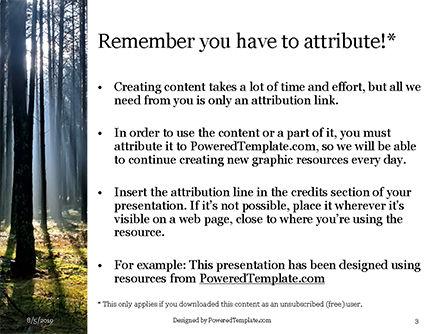 Spruce-Fir Forest Presentation, Slide 3, 15830, Nature & Environment — PoweredTemplate.com