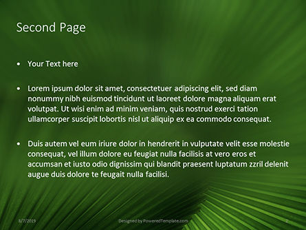 Leaves of the Fan Palm Presentation, Slide 2, 15837, Nature & Environment — PoweredTemplate.com