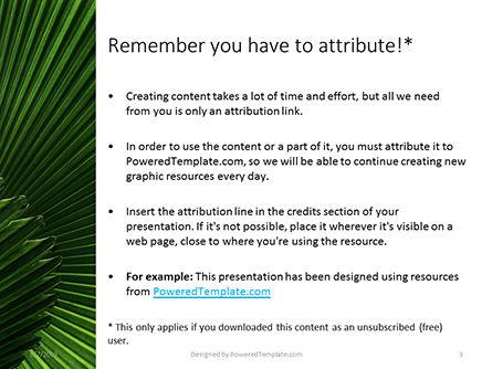 Leaves of the Fan Palm Presentation, Slide 3, 15837, Nature & Environment — PoweredTemplate.com