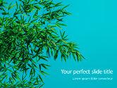Nature & Environment: Modelo do PowerPoint - folhas de bambu no fundo azul #15857