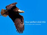 Nature & Environment: Modelo de PowerPoint Grátis - almoço da águia calva #15862