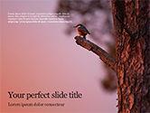 Nature & Environment: Modelo do PowerPoint - um pássaro preto que empoleira-se no ramo de árvore #15868
