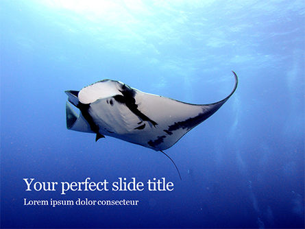 Nature & Environment: Mantarog Gratis Powerpoint Template #15944