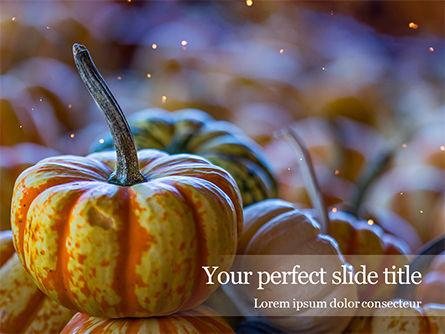 Holiday/Special Occasion: Mini Pumpkins at Farmers Market Presentation #16065