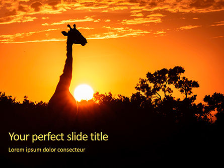 Nature & Environment: Wilde Zonsondergang Gratis Powerpoint Template #16116