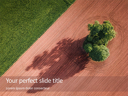Nature & Environment: Aerial View Of Field And Shade Tree Gratis Powerpoint Template #16143