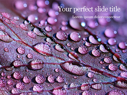 Nature & Environment: Templat PowerPoint Water Drops On Purple Leaf #16158