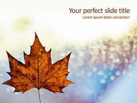 Nature & Environment: Maple Leaf on Festive Bokeh Background Presentation #16175