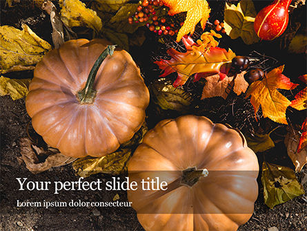 Holiday/Special Occasion: still life harvest with pumpkins and leaves - 無料PowerPointテンプレート #16176