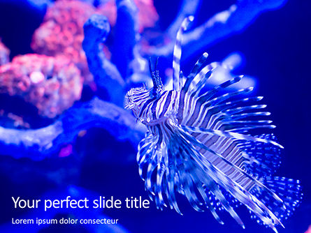 Nature & Environment: Plantilla de PowerPoint gratis - black and white lion fish #16193