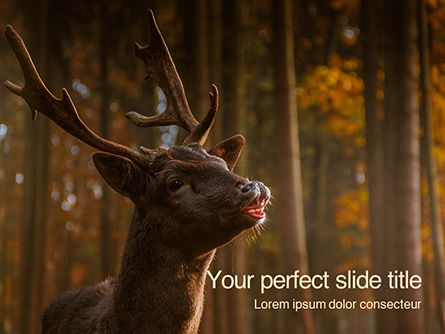 Nature & Environment: Plantilla de PowerPoint - brown deer portrait #16219