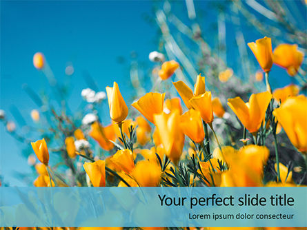 Nature & Environment: Templat PowerPoint Gratis Yellow Petaled Flowers #16221