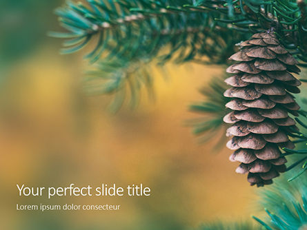 Nature & Environment: Modelo de PowerPoint Grátis - pine cone on branch #16347