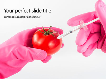 Technology and Science: Gmo Scientist Injecting Liquid From Syringe Into Tomato Presentation Gratis Powerpoint Template #16672